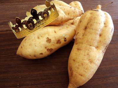 コガネセンガンは芋の王様